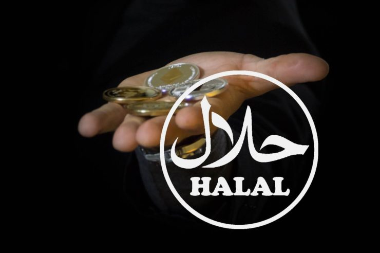 fake halaal crypto investment scam in india
