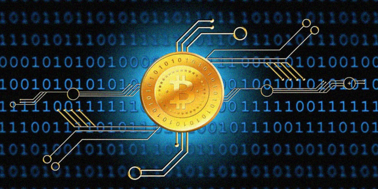 50 percent Bitcoin control invested in 4652 wallets 1