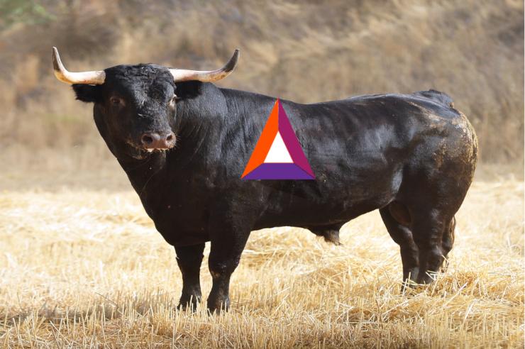 Basic Attention token price analysis: A bull run to 1900 Satoshis 1