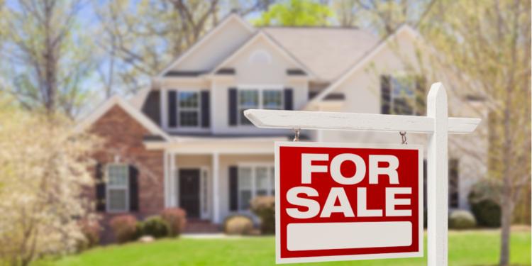 Real Estate Institute of Queensland aims for a transparent tenancy platform 1