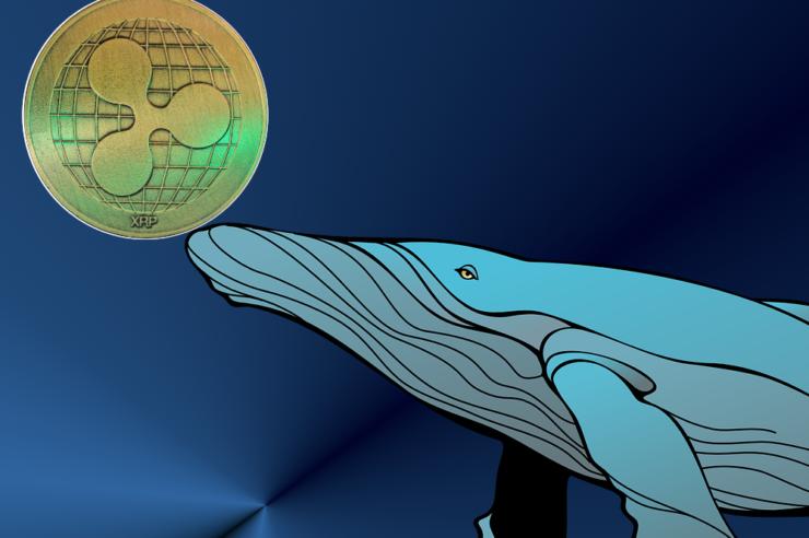 Ripple XRP whales transfer 11 million XRP 1