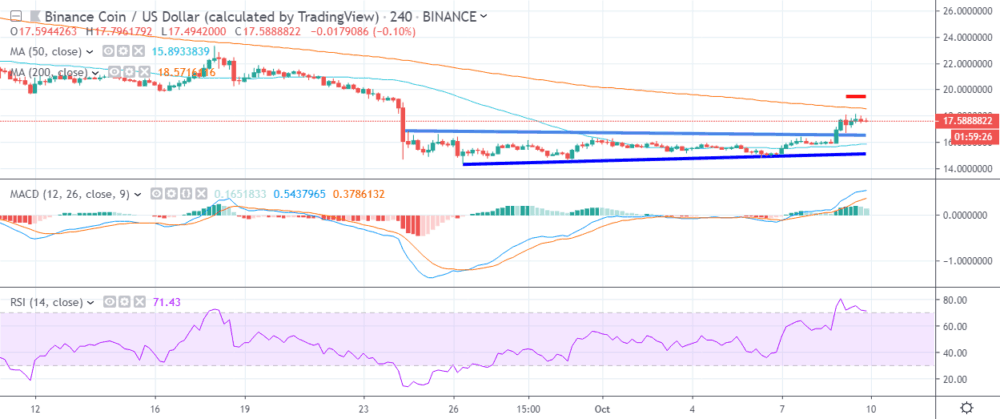 Binance Coin price movement: What to expect? 8