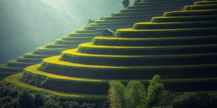 Thailand introduces agro blockchain tracking
