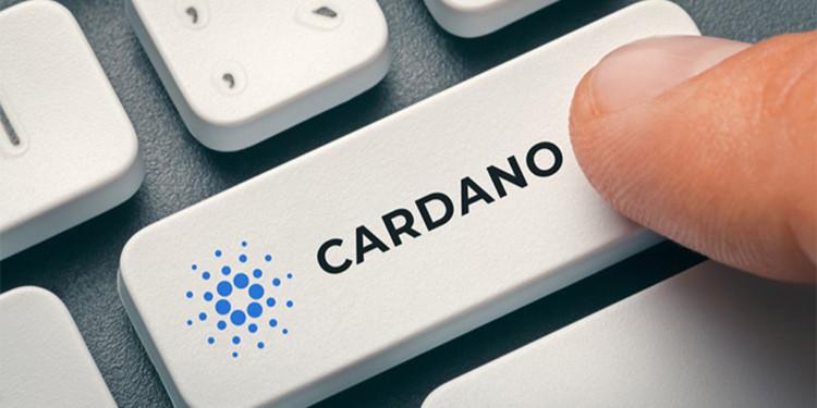cardano ada price analysis nov 8