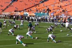 Has Litecoin's association with Miami Dolphins misfired?