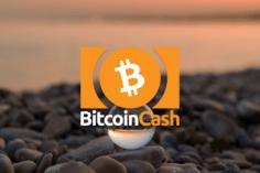 Bitcoin Cash Price: falls back below $186