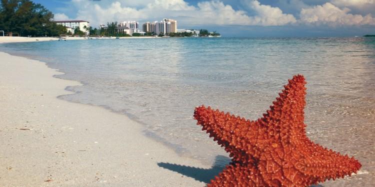 Bahamas Sand Dollar pilot phase begins in Exuma; full launch in 2020