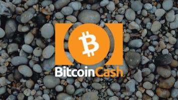 Bitcoin Cash Price: nears $205
