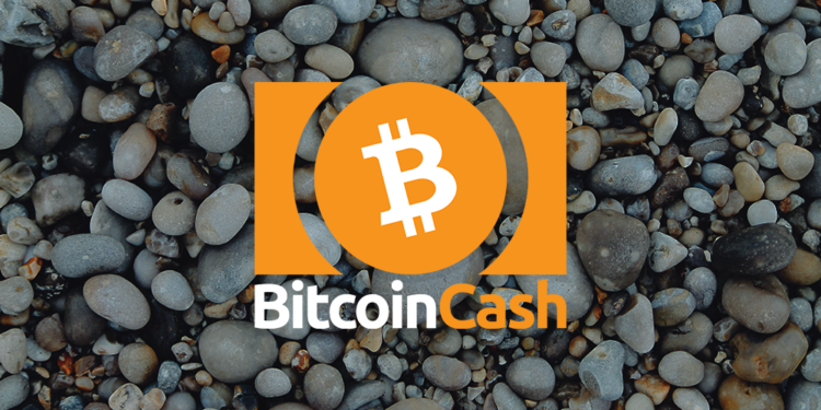 Bitcoin Cash Price: nears $205