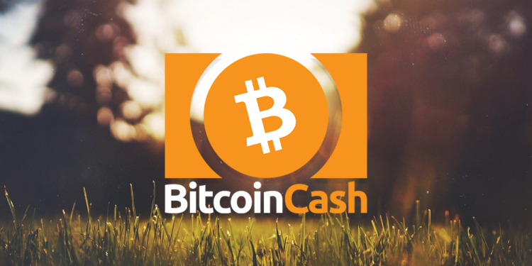 Bitcoin Cash Price: fall to $237