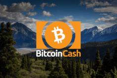 Bitcoin Cash Price: falls under $240