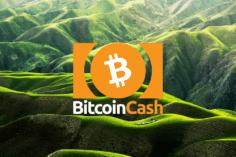 Bitcoin Cash Price: reaches $272