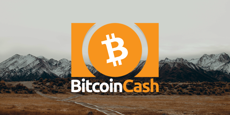 BCH featured image january 12