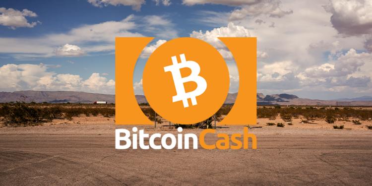Bitcoin Cash price falls to $317
