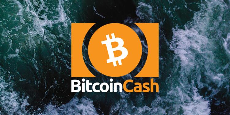 Bitcoin Cash price rises above $348