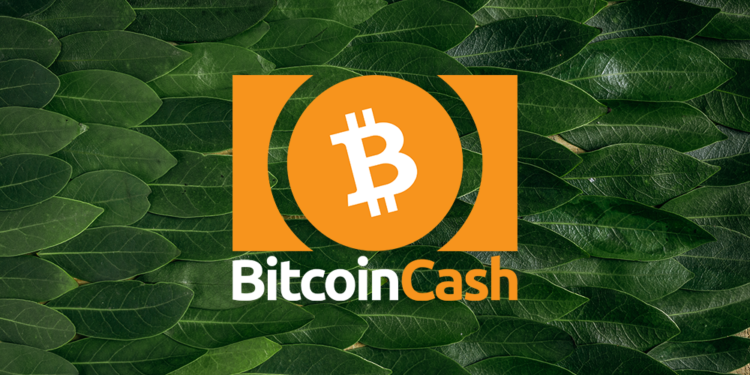 Bitcoin Cash price rests at $384