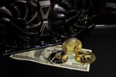 Digital dollar launch soon according to Twitter sources 2