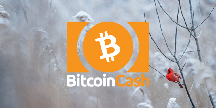 Bitcoin Cash price retests near $380 1