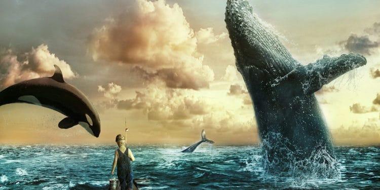 Ethereum 2.0: Ethereum whales stockpiling ETH in anticipation of Ethereum 2.0