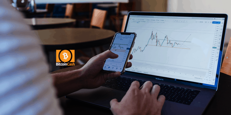 Bitcoin Cash price rises above $246: what's next? 1