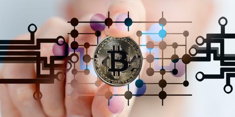 crypto firms status exposed