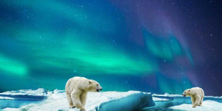 Bitcoin Core code gets buried inside an Arctic mountain 1