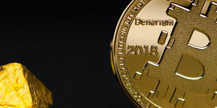 Bitcoin halving searches