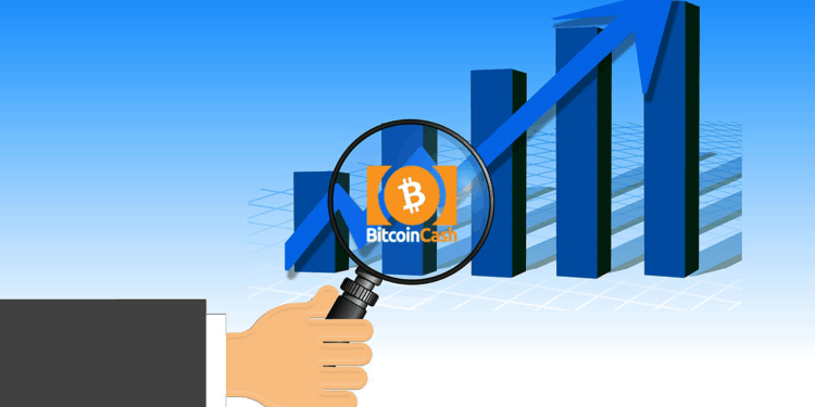 Bitcoin Cash price accumulates near $237 1