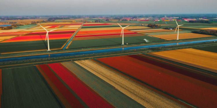 Dutch crypto industry