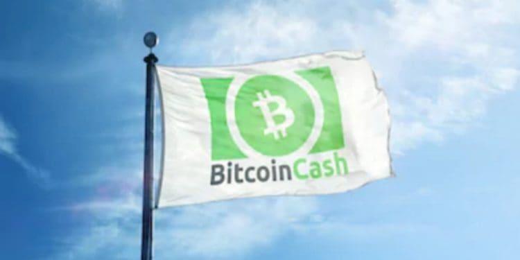 Bitcoin jesus