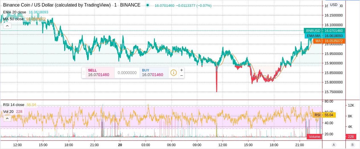 Binance Coin price chart 2 - 20 June