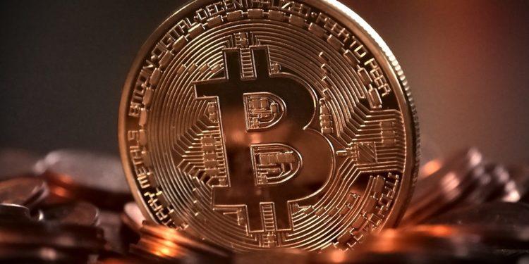 Raoul Pal Bitcoin holders