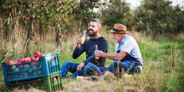 Spanish cider makers turn to blockchain for supply chain transparency